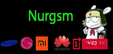 Nurgsm-Logo